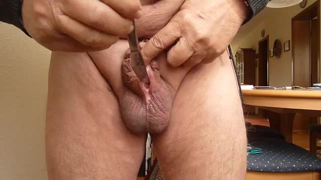 Cock split Cut